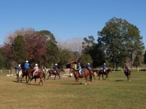 The Channon/Dunoon Pony Club
