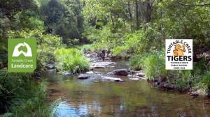 Tuntable Creek Public School and Landcare
